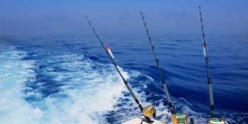 Fishing Charters Perth